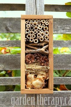From garden therapy, called a bug hotel, combining many shapes, textures, and foodstuffs in a small space. Designed to hang on a fence