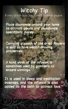 Witchy Tip - http://www.ancient-wisdoms.com/