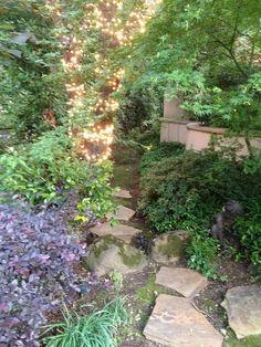 Garden ideas ~ path