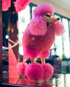 Pink Tulle Poodle in a Henri Bendel Store Window in NYC. #tulleribbon