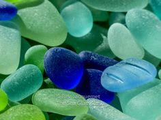 "$40 ""The Sea Glass Rush"", author bevjacquemet@gmail.com ""Tiny Beauties ~ Favorite Colors!"""