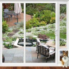How to install a dog door in a glass door read more httpwww dog door for sliding glass door planetlyrics Images