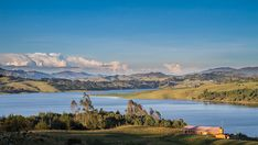 Risultati immagini per sisga Fauna, Mountains, Nature, Travel, Cypress Trees, Mountain Range, Fuentes De Agua, Fishing, Naturaleza