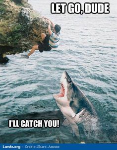 Seriously...let go, dude!