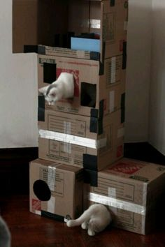 Homemade Cat Condo | Craft Ideas | Pinterest #cat #furniture - Learn more about cat furniture at - Catsincare.com!