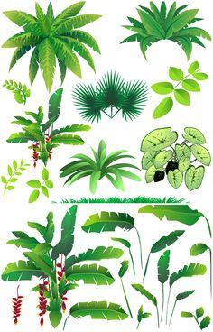Rainforest plants vector | Vector Graphics Blog