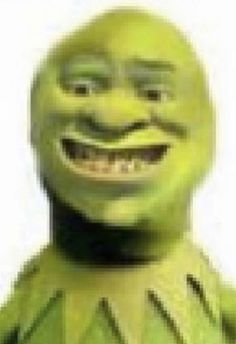 Official Site of DreamWorks Animation. For 25 years, DreamWorks Animation has considered itself and its characters part of your family. Shrek Funny, Shrek Memes, Dankest Memes, Funny Profile Pictures, Reaction Pictures, Funny Images, Funny Photos, Donia, Cursed Images
