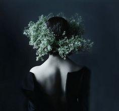 ☽ Drøm Skog ☾