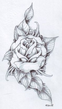 Ultimate Rose Tattoo Drawing