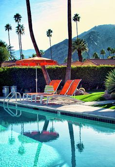 Pool Photograph - Water Waiting Palm Springs by William Dey Best Vacation Destinations, Best Vacations, Vacation Spots, Jet, Palm Springs Style, Enjoy Your Vacation, Tropical, Water Photography, Color Photography