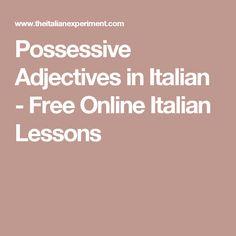 Possessive Adjectives in Italian - Free Online Italian Lessons