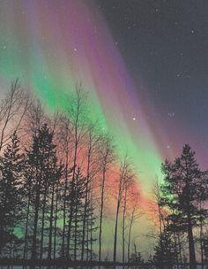 Finland's Northern Lights Aurora Borealis Aurora borealis storm colours in night sky, northern Finland, February . Beautiful Sky, Beautiful Landscapes, Beautiful Places, Beautiful Pictures, Aurora Borealis, Northen Lights, Natural Phenomena, Amazing Nature, Belle Photo