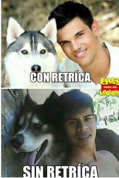 Mejor con retrica..... Best Memes, Dankest Memes, Funny Images, Funny Pictures, Funny Pics, Funny Stuff, Memes Da Internet, Funny Spanish Memes, Spanish Quotes