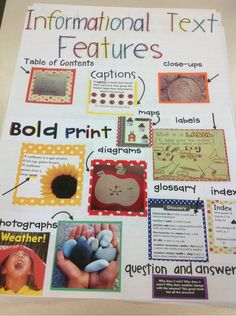 Informational text features demonstrated with great visual appeal. A great activity for your interactive notebook or writing class.