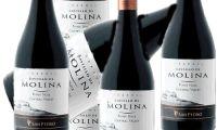 http://diariodelvino.com/index.php/noticias/item/274-finlandia-un-pinot-noir-chileno-gana-el-titulo-de-vino-del-ano
