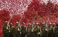 First World War Centenary Marked With Amazing Poppy Shower Display At Bovington Tank Museum