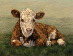 """denise rich cow paintings   Moo Baby by denise rich Oil ~ 36"""" x 48"""""""