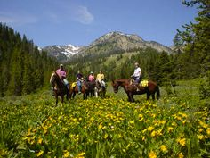 A horse packing trip somewhere spectacularly beautiful