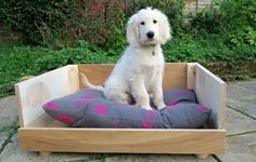 How to make a dog bed? We used 1 pack of wood flooring and created a lovely wooden dog bed for my puppy. Isn't as hard as it sounds!