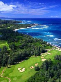 Hawaii Golf   Palmer Course at Turtle Bay   North Shore Golf