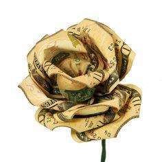 http://figures.boundless.com/972/full/money-flower.jpe
