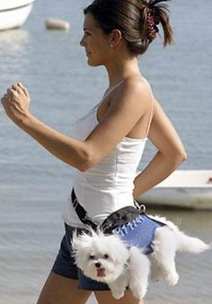 puppy fanny pack. style and functionality.