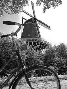 Amsterdam  #carlobonphotographer