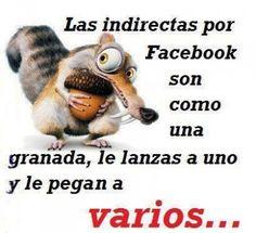 Imagenes De Animales Graciosos Con Frases para facebook