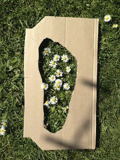 Daisy Footprints. Using a cut out template of your foot, count how many daisies can you stand on
