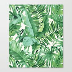 Green Tropical Leaves III Canvas Print By CatyArte Worldwide Shipping Available At Society6