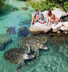 Nature Lovers   Xcaret, Natural Paradise of the Riviera Maya