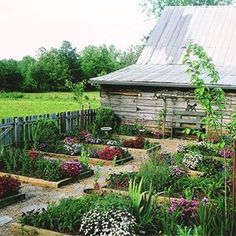 Potager: beautiful and productive raised-bed kitchen garden with vegetables, herbs, and flowers. This gets the prime real estate immediately outside of my house on the south side.