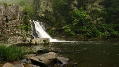 Abrams Falls- near Abrams Creek Campground in Happy Valley TN, our favorite primative camping in The Smokys