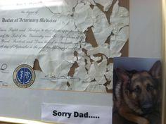 Our vet has a wonderful sense of humor :)