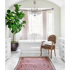 Get inspired by Traditional Bathroom Design photo by Burnham Design. Wayfair lets you find the designer products in the photo and get ideas from thousands of other Traditional Bathroom Design photos. Traditional Bathroom, Traditional Decor, Ficus Lyrata, Shower Plant, Bathroom Chandelier, Chandelier Lighting, Bathroom Lighting, Interior Paint Colors, Luxury Interior Design