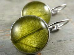 Echte Blätter Ohrringe - Silberfarben. Echte getrocknete Blätter.  Unter Glas in silberfarbenen Fassungen zum Zuklappen. Anti-Allergen und Nickelfrei.