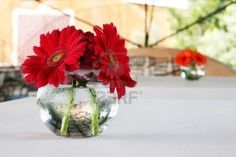 red gerber daisies in round vases decorate the table at a wedding reception