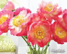 """Download free Easter and spring-theme desktop wallpaper images from our collection of Midwest Living photographs.    Find a photo you like, click """"Download this file,"""" then right-click on the photo to make it your desktop image."""