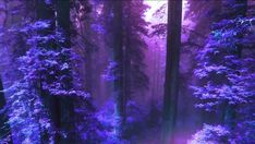 Shades of Purple Violet Aesthetic, Dark Purple Aesthetic, Witch Aesthetic, Aesthetic Colors, Aesthetic Pictures, Purple Haze, Shades Of Purple, Neon Purple, A Hat In Time