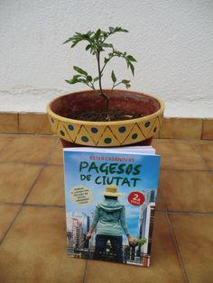 Silvia (Badalona) #40 Planter Pots