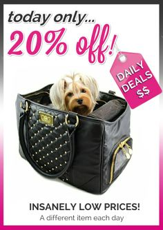 Pretty and practical style for your jet setting dog.