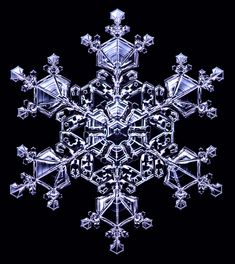 Designer Snowflakes - -- a real sliver of ice, grown from water vapor, but created under controlled conditions in the laboratory. They might also be called synthetic crystals, but I call them designer snowflakes because I am free to design the final shape by changing the temperature and humidity as the crystal grows. SnowCrystals.com Snowflake Images, Snow Flake Tattoo, Crystal Snowflakes, Ice Crystals, Snow Scenes, Sacred Geometry, Fractals, Winter Wonderland, Frost