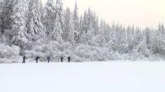 Umpihangessa hiihtäminen käy voimille.