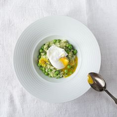 risotto of bishopsweed and green peas with a poached egg for #salonmagazin