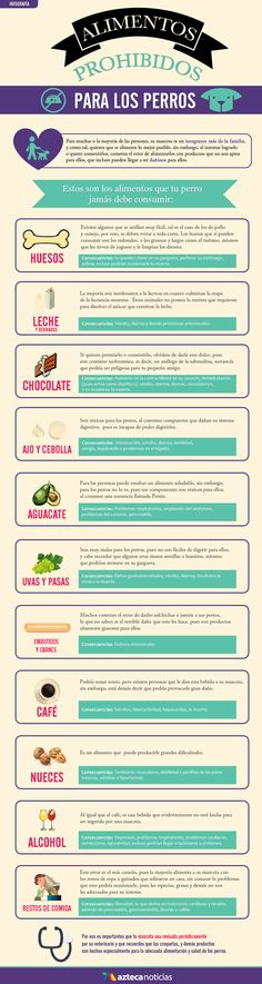 Alimentos prohibidos para los perros #infografia