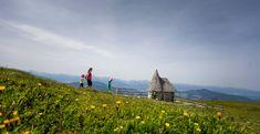 Kreischberg im Sommer – Google-Suche Berg, Mountains, Google, Nature, Travel, Summer Vacations, Searching, Naturaleza, Viajes