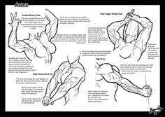 An incredulous fuck-ton of muscular female references. Sourced by inxipe: #1: Digital Sculpting Exercise - Female Torso by Adrian Spitsa, http://adrianspitsa.blogspot.com/2012/11/digital-sculpting-exercise-female-torso.html #2: Photo taken from...