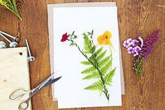 Kerää talteen pihasi kauneimmat kukat ja sommittele niistä ihanat kasvitaulut. Katso Viherpihan ohjeet ja tee itse helppo kasviprässi parin vanerilevyn avulla!