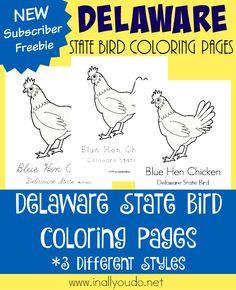 Gallina Roja Dibujo para colorear pjaros y aves Pinterest