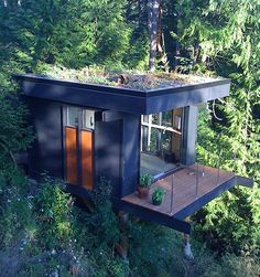 Tree Top Home Office